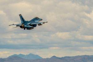 Xem tiêm kích F-16 Mỹ sơn màu mô phỏng Su-57 Nga lần đầu sải cánh