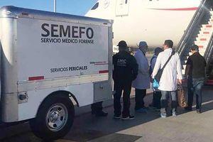 Giấu ma túy trong dạ dày, hành khách tử nạn giữa chuyến bay