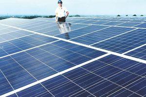 TPHCM đã có 1.623 hộ gia đình, cơ quan lắp đặt điện mặt trời