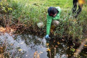Sông trên khắp thế giới đang nhiễm kháng sinh cao gấp 300 lần