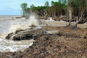 Thiếu hụt dòng đầu tư vào dự án phát triển bền vững