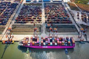 Kim ngạch xuất khẩu của Việt Nam sang Mỹ trong quý I tăng 40,2%