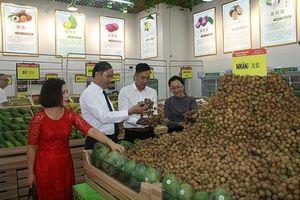 Xuất khẩu xoài Sơn La tăng mạnh