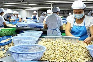 Chủ động mở rộng quy mô và cơ cấu thị trường, hàng hóa xuất khẩu