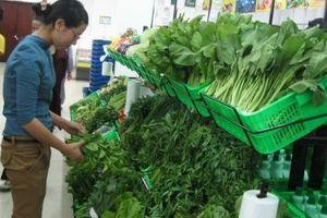 Xây dựng Trung tâm cung ứng nông sản: Nhu cầu cấp bách