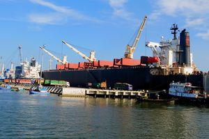 Vinalines chi 415 tỷ đồng mua lại hơn 75% cổ phần cảng Quy Nhơn