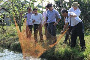 Hiệu quả từ nuôi trồng thủy sản bền vững
