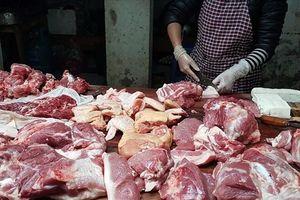 Cho phép giết mổ lợn khỏe trong vùng dịch tả lợn Châu Phi