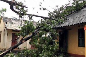 Mưa, lốc xoáy tại Yên Bái khiến 1 người chết, gần 50 ngôi nhà bị tốc mái