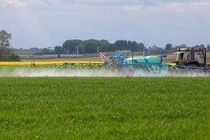 Pháp cấm thuốc bảo vệ thực vật chứa chất gây ung thư, 'độc hại' với khả năng sinh sản