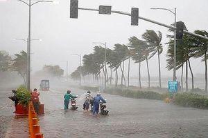 Từ tháng 6 có thể xuất hiện những cơn bão mạnh, dị thường