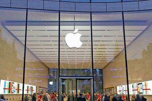 Muốn được làm cho Apple, thiếu niên 13 tuổi hack luôn máy chủ Táo khuyết