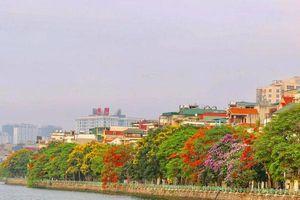 Đây là Hà Nội đang những ngày đỏ phượng, tím bằng lăng, vàng muồng hoàng yến… rực rỡ khắp phố phường