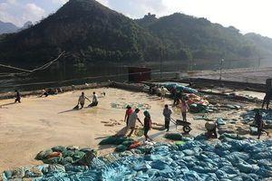 Sơn La: Tăng cường quản lý môi trường với các cơ sở chế biến nông sản