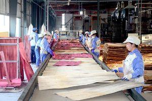 Hà Nội: Kim ngạch xuất khẩu tháng 5 tăng 10,1% so tháng trước