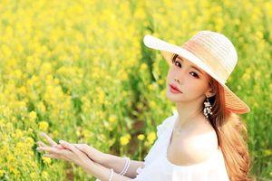 Mùa hoa cải vàng đẹp nao lòng cho người mê du lịch Hàn Quốc