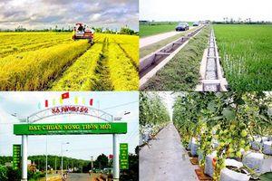 Phát động cuộc thi báo chí về phát triển nông nghiệp, nông thôn bền vững dành cho các nhà báo ASEAN