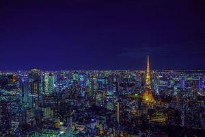 Tokyo lung linh nhìn từ các đỉnh cao của thành phố