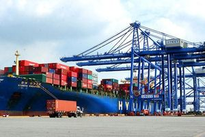 Việt Nam có lợi thế đặc biệt, xây cảng nhiều, nhưng thiếu hạ tầng kết nối