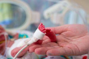 Sức sống phi thường của em bé nhỏ nhất thế giới