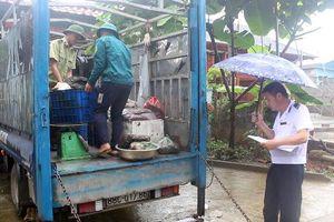 Hà Giang: Phát hiện 1 xe ô tô chở nội tạng không rõ nguồn gốc