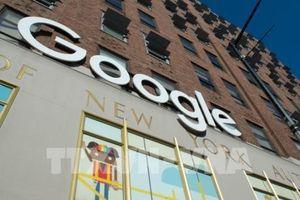 Google sẽ báo trước 30 ngày khi sửa đổi điều khoản dịch vụ