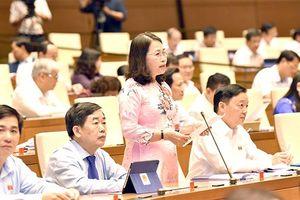 Quốc hội thảo luận về hình thực hiện kế hoạch phát triển KT-XH và ngân sách nhà nước