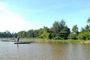 Quảng Nam: Trồng phục hồi hệ sinh thái Sông Đầm