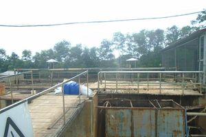 Lựa chọn công nghệ xử lý rác hiện đại – Hướng đi tất yếu tại Bắc Giang