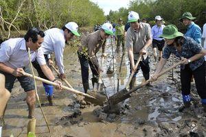 Phát động trồng rừng phòng hộ ven biển tại tỉnh Bạc Liêu