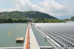 Nỗ lực đưa các dự án điện mặt trời vào vận hành trước 30-6