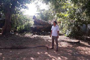 Nghi vấn lấy đất của dân đem bán đấu giá tại Thừa Thiên – Huế: Dấu hiệu sai phạm của UBND thị xã Hương Thủy