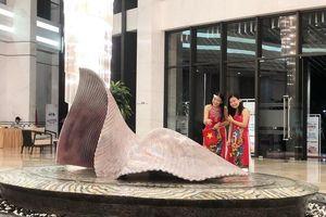 5 tháng đầu năm Việt Nam đón gần 7,3 triệu lượt khách quốc tế