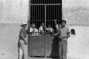 Hình ảnh truyền cảm hứng của một nhóm người đồng tính nam bị bắt vào thập niên 1930