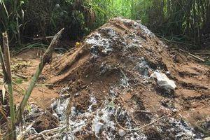 Cần Thơ: UBND quận chỉ đạo chôn heo chết sát khu dân cư!
