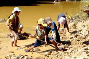 Ngăn ngừa lao động trẻ em: Cần sự chung tay của nhiều đối tác và cộng đồng xã hội