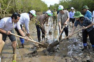Bộ Tài nguyên và Môi trường phát động trồng rừng phòng hộ ven biển tại Bạc Liêu