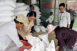 Thanh Hóa: Hỗ trợ gạo cho đồng bào dân tộc thiểu số trong công tác bảo vệ, phát triền rừng