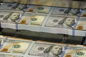 Việt Nam ít có nguy cơ bị Mỹ gắn mác 'thao túng tiền tệ'