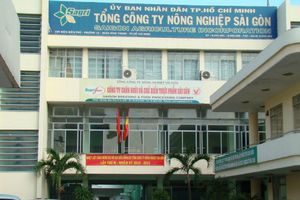 Sở Nội vụ đề xuất TPHCM đề xuất kỷ luật ông Phạm Tuấn Hùng