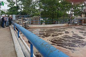 Đình chỉ hoạt động Công ty AB Mauri vì gây ô nhiễm môi trường