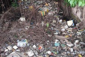 Kinh hoàng rác bẩn trên kênh Rạch Dừa