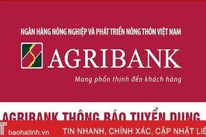 Agribank Chi nhánh Hà Tĩnh và Agribank Hà Tĩnh II tuyển dụng 26 nhân sự
