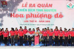 Trên 40.000 chiến sỹ tham gia Chiến dịch tình nguyện Hoa phượng đỏ 2019