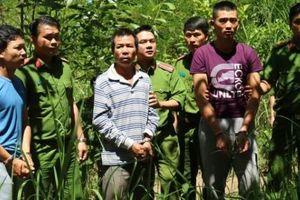 Bắt đối tượng chủ mưu vụ đầu độc hơn 10ha rừng thông tại Lâm Đồng