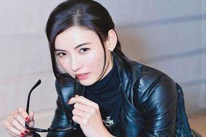 Trương Bá Chi bất ngờ bị tố nói dối