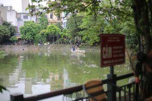 Hà Nội: Cá chết nổi trắng hồ Văn Chương, dân sống quanh hồ khiếp sợ vì mùi hôi nồng nặc