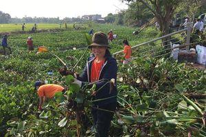 Thủ tướng biểu dương mô hình 'Ngày Chủ Nhật Xanh' của Thừa Thiên Huế