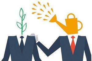 Cố vấn khởi nghiệp trên hành trình khởi nghiệp sáng tạo