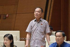 Đại biểu Quốc hội: 'Không ít nơi ngăn cản, né tránh sự điều tra của báo chí'